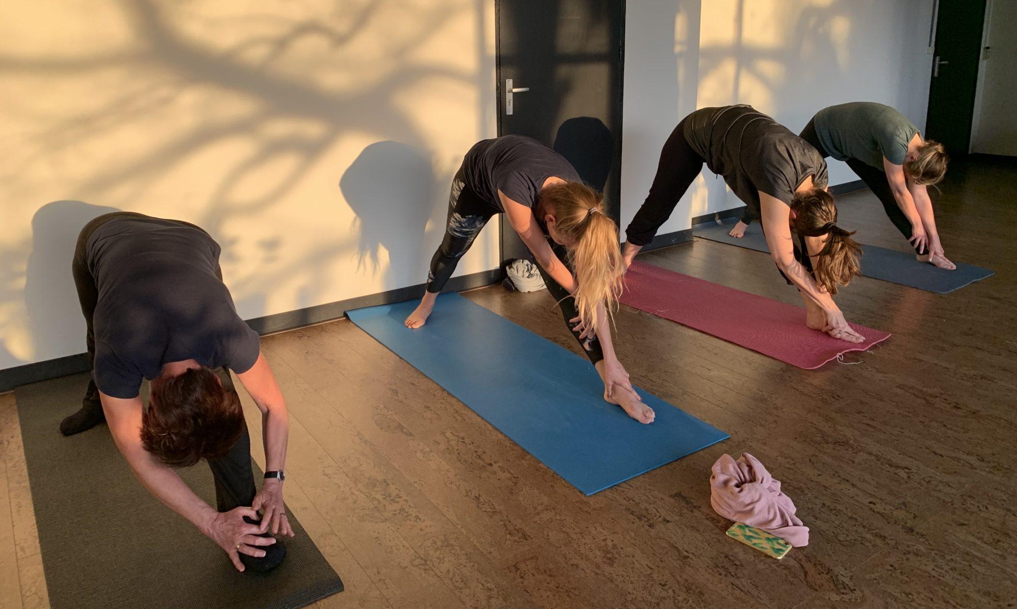 De Yogaplaats